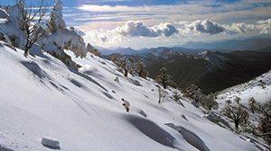 p005_parques_naturales_y_reservas_de_la_biosfera
